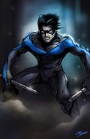 Nightwing by glencanlas