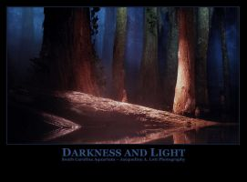 Darkness and Light by Isquiesque