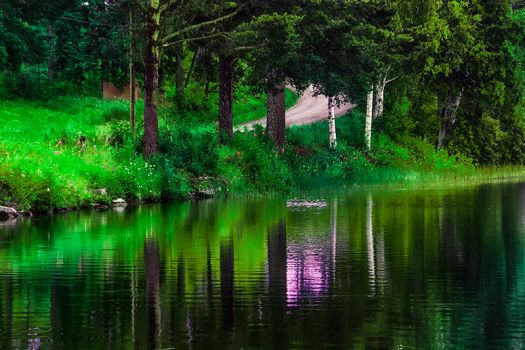 Green shades by RobinHedberg