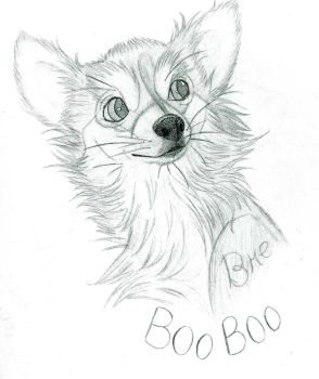 Bruiser Drawing by UltimateCluckinbell
