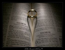 Bible by Zx20