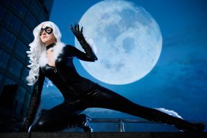 Black Cat by diacita