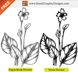Hand Drawn Sketchy Plant Brush by Stockgraphicdesigns