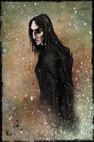 Harry Christmas, Snape by Patilda