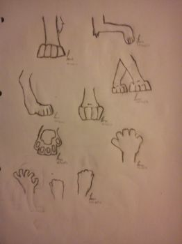 Paw and Hand Practice by deathgliger