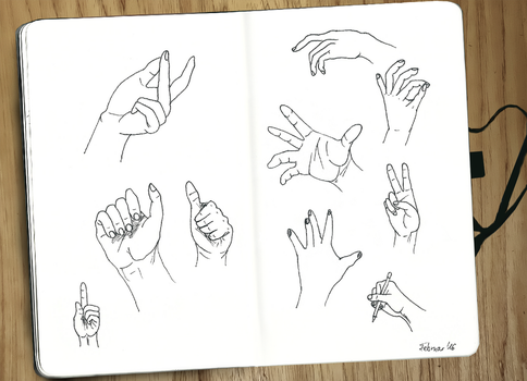 Hands Study by Das-Pfanntom