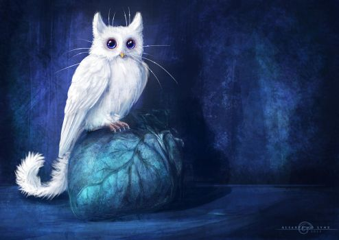 Cat-Owl by AlsaresLynx