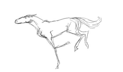 Horse Animation ? by Liliandril