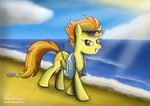 Day at the beach by GreenflyArt