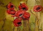 Poppies by Mykhal25