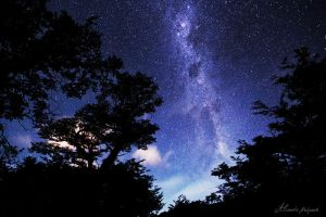 Patagonian Night by alexandre-deschaumes