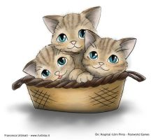Basketful of kittens by nime080