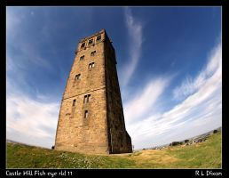 Castle Hill fish eye rld 11 by richardldixon