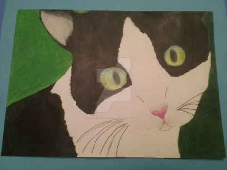 My cat (colored pencil) by creepergirl890