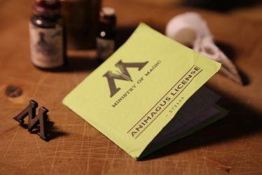 Harry Potter - Animagus License Group (a) by pocko-85