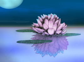 Water Lily by themasterofnone