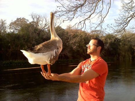 Bruce the Goose and I by Call-Boy