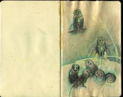 Owl song prelim- sketchbook 2 by rodluff