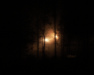 Lights in the Murk by MrWootton