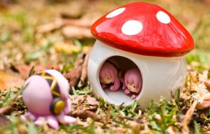 Shroomhouse by Kodomut