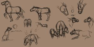 Nightmare foal sketches by CreatTheCrow