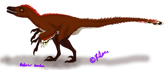 Balaur Incomplete Preview by MarvoloNevra