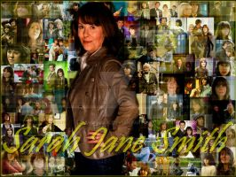 Sarah Jane Smith by Amrinalc