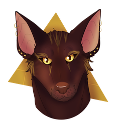 Pharaoh Hound [ArtTrade with Vasil-y] by TheOrangeDaisy