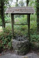 Forest Well 2 by fuguestock