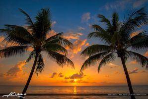 Coconut-Tree-Sunrise-at-the-Beach by CaptainKimo
