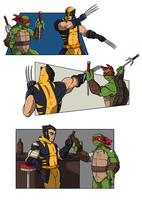 Turtle and Wolverine by CandyKappa