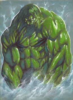 The Hulk by vincent-fourneuf