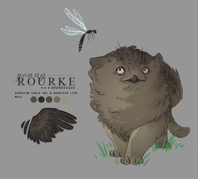 Rourke Character Sheet by sterlingy