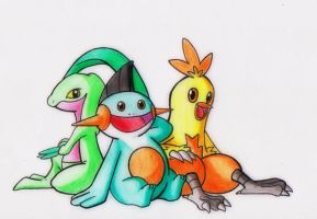 Pokemon Generation 3: Hoenn Starter First Evolve