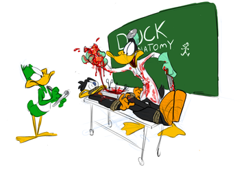 Duck Anatomy by Ishoka
