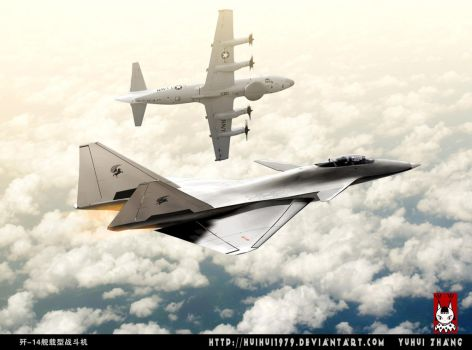 Chinese J-14 Navy fighter owls by huihui1979