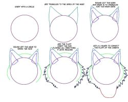 drawing wolves frontal view step by step (part 1) by Gerundive