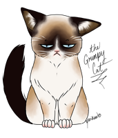 Grumpy Cat by Yurikine
