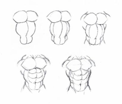 Draw muscle torso by krigg
