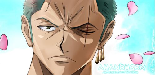 One Piece 909 Zoro Cut Zorojirou Wano Kuni Colors by Amanomoon