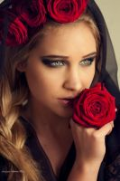 red rose by Violetessa