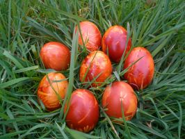Onion Dyed Easter Eggs by MerlinTheRed