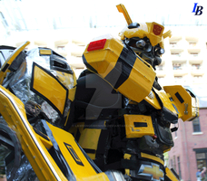 Bumblebee on Patrol by lawrencebrenner