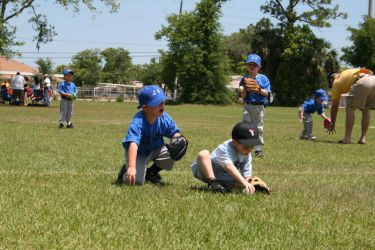 T-Ball Stock 04 by coldstock