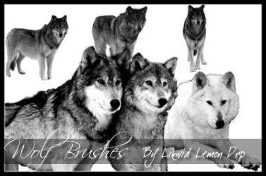 Wolf Brushes by LiTdesign