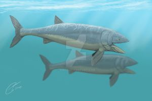 Leedsichthys revisited by DiBgd