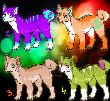 Puppy adops :Closed: by Phed-adopts