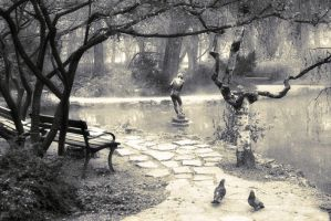 Pond and Two Pigeons by john-novak