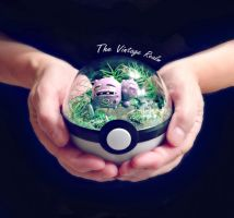 Poke Ball Terrarium - Weezing Back Alley