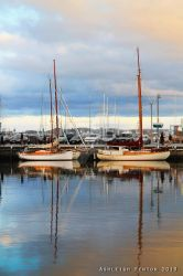 Tall Boats Festival 2 in Hobart by celloismistic